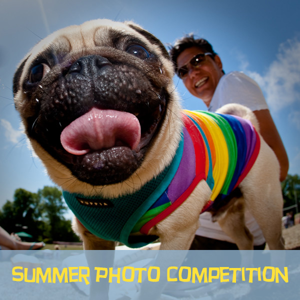 summer-photo-competition