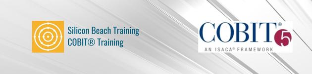 COBIT Training